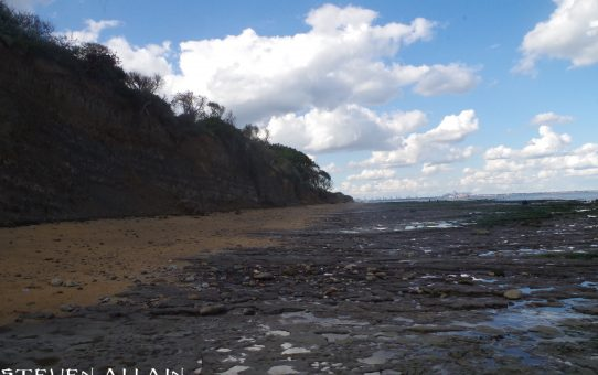 #SciFri: Fossil hunting at Walton-on-the-Naze