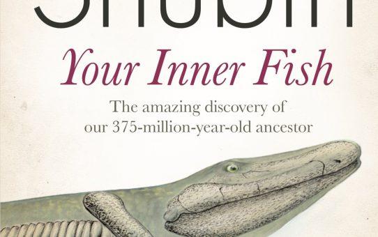#StevesLibrary: Your Inner Fish